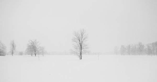 Image of cold winter